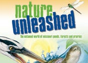 Nature Unleashed cover with a dragonfly and a heron eating a fish
