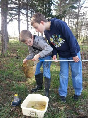 Two students analyzing the species caught in their dip net.